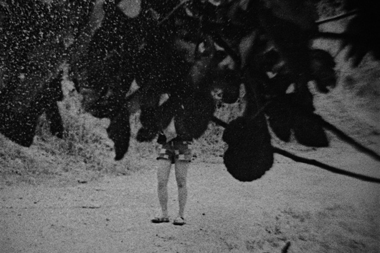 Still from Things (Winter) ©  Ben Rivers 'Things' by Ben Rivers was curated and produced by Steven Bode of Film and Video Umbrella and Gareth Evans for the project 'Stay Where You Are'. Supported by Jerwood Charitable Foundation