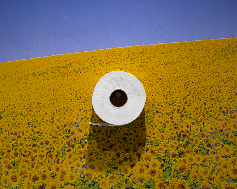 Toilet roll holder on sunflower field background
